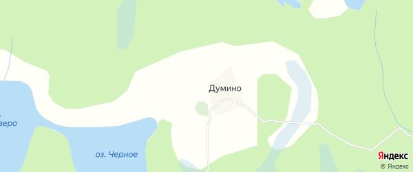 Карта деревни Думино в Архангельской области с улицами и номерами домов