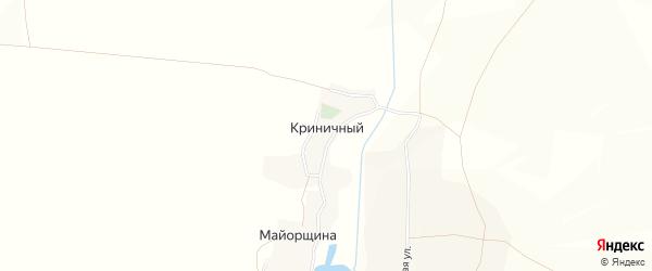 Карта Криничного хутора в Белгородской области с улицами и номерами домов