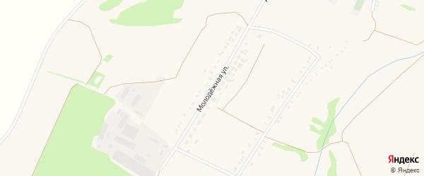 Молодежная улица на карте Малотроицкого села с номерами домов