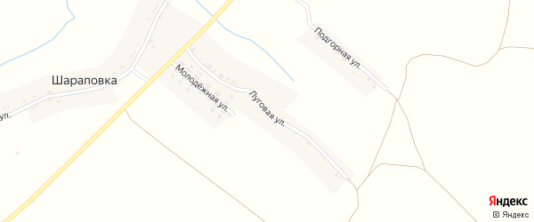 Луговая улица на карте села Шараповки с номерами домов
