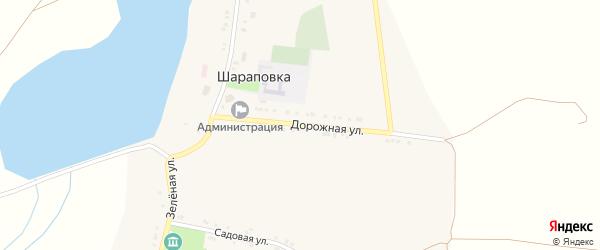 Дорожная улица на карте села Шараповки с номерами домов