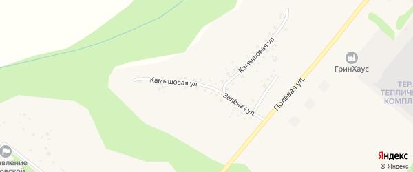 Камышовая улица на карте села Терехово с номерами домов