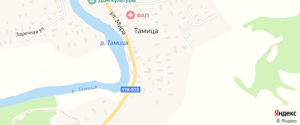 Заречная улица на карте села Тамицы с номерами домов