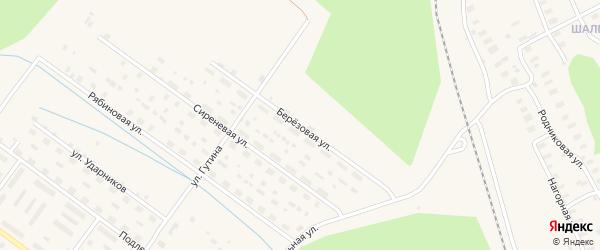 Березовая улица на карте Онеги с номерами домов