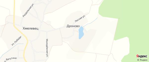 Карта села Дроново в Белгородской области с улицами и номерами домов