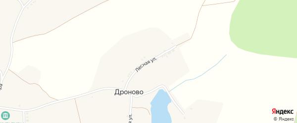 Лесная улица на карте села Дроново с номерами домов