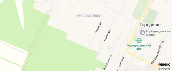 Переулок 3-й Мира на карте села Городища с номерами домов