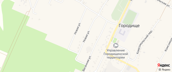 Новая улица на карте села Городища с номерами домов
