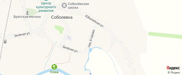 Переулок Егорова на карте села Соболевки с номерами домов