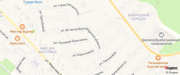 Улица Поповой-Линиченко на карте Валуек с номерами домов