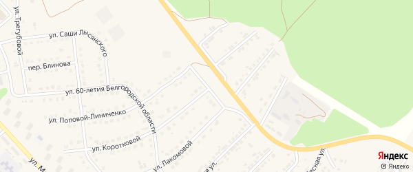 Переулок Куничёва на карте Валуек с номерами домов