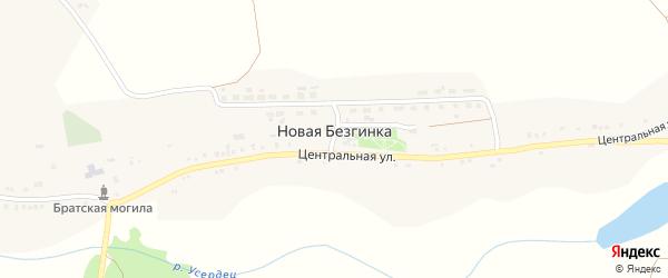 Молодежная улица на карте села Новой Безгинки с номерами домов