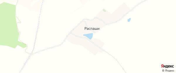 Карта села Распаши в Белгородской области с улицами и номерами домов