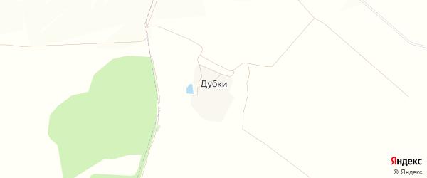 Карта поселка Дубки в Белгородской области с улицами и номерами домов