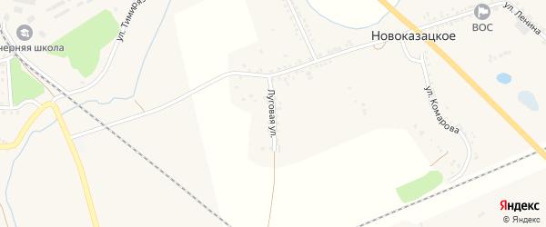 Луговая улица на карте Новоказацкого села с номерами домов