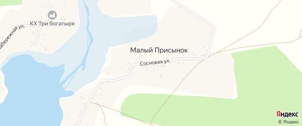 Сосновая улица на карте поселка Малого Присынка с номерами домов