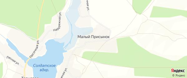 Карта поселка Малого Присынка в Белгородской области с улицами и номерами домов