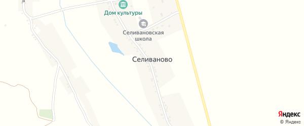 Школьный переулок на карте села Селиваново с номерами домов
