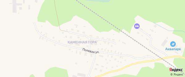Мичуринская улица на карте Онеги с номерами домов
