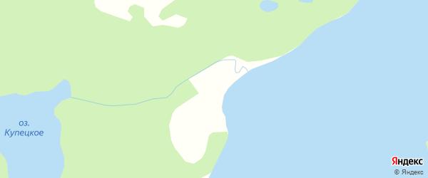 Карта деревни Тарасово в Архангельской области с улицами и номерами домов