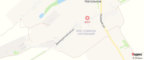 Демократическая улица на карте Нагольного села с номерами домов