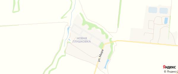 Карта хутора Глушковки в Белгородской области с улицами и номерами домов