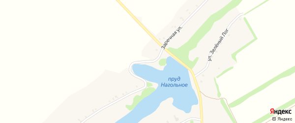 Заречная улица на карте Нагольного села с номерами домов