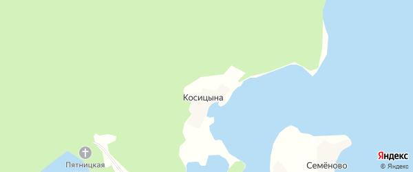Карта деревни Косицыной в Архангельской области с улицами и номерами домов