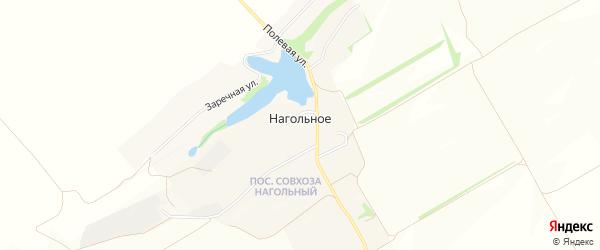 Карта Нагольного села в Белгородской области с улицами и номерами домов