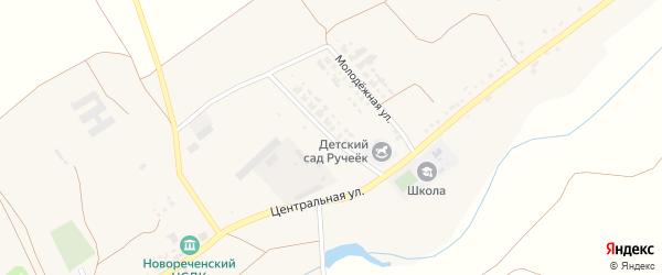 Молодежная улица на карте села Новоречьего с номерами домов
