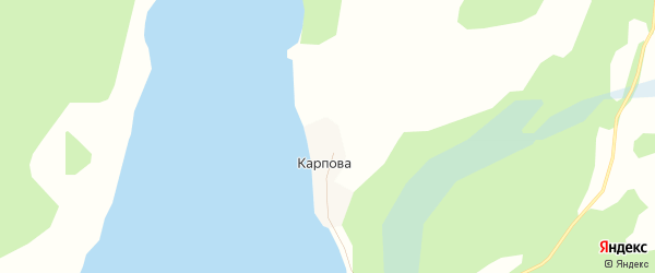 Карта деревни Карпова в Архангельской области с улицами и номерами домов