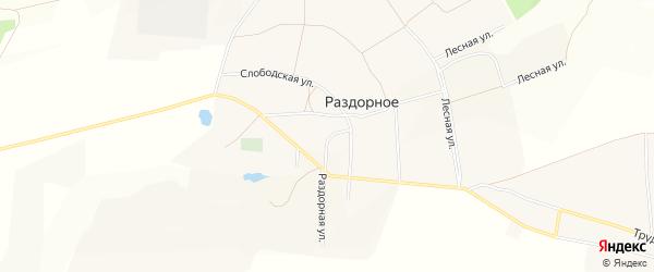 Карта Раздорного села в Белгородской области с улицами и номерами домов