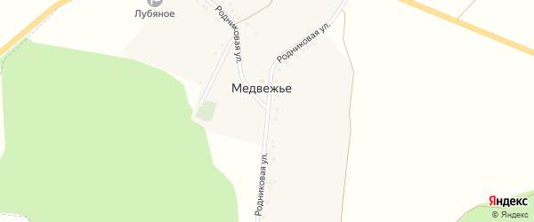 Родниковая улица на карте хутора Медвежьего с номерами домов