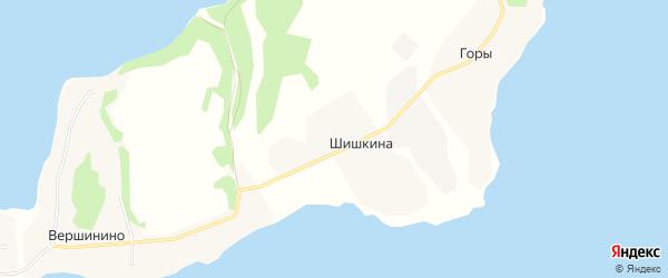 Карта деревни Шишкиной в Архангельской области с улицами и номерами домов