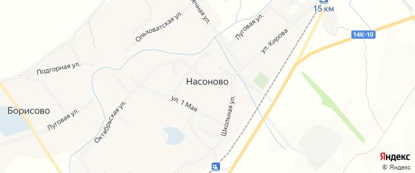 Карта села Насоново в Белгородской области с улицами и номерами домов