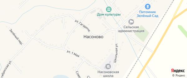 Тихий переулок на карте села Насоново с номерами домов