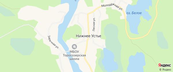 Карта деревни Нижнего Устья в Архангельской области с улицами и номерами домов