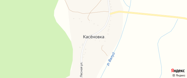 Лесная улица на карте села Касеновки с номерами домов