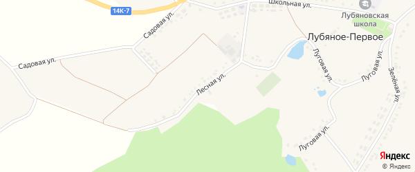 Лесная улица на карте Лубяного-Первого села с номерами домов