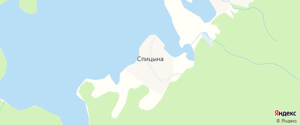 Карта деревни Спицыной в Архангельской области с улицами и номерами домов