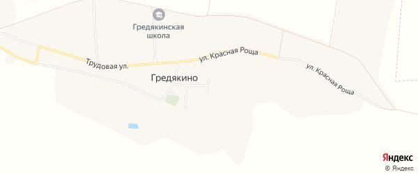 Карта села Гредякино в Белгородской области с улицами и номерами домов