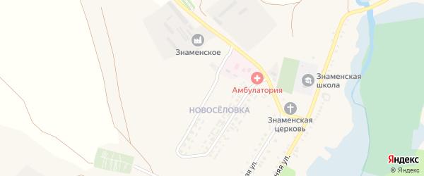 Молодежная улица на карте села Знаменки с номерами домов