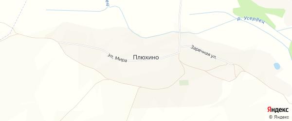 Карта села Плюхино в Белгородской области с улицами и номерами домов