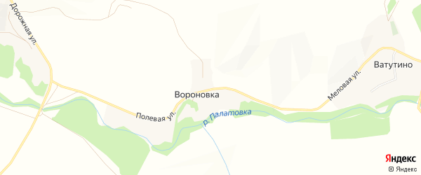 Карта села Вороновки в Белгородской области с улицами и номерами домов