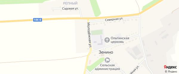Молодежная улица на карте села Зенино с номерами домов