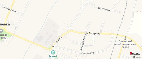 Улица Гагарина на карте села Ливенки с номерами домов