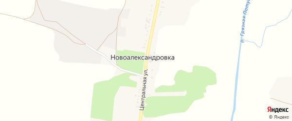 Центральная улица на карте села Новоалександровки с номерами домов