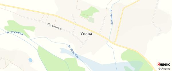 Карта села Уточки в Белгородской области с улицами и номерами домов