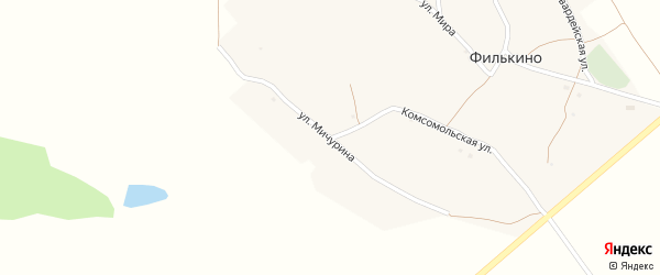 Улица Мичурина на карте хутора Филькина с номерами домов