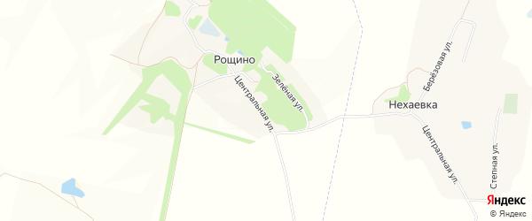 Карта поселка Рощино в Белгородской области с улицами и номерами домов